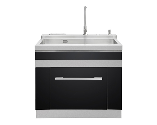 Integrated sink dishwasher (double sinks)